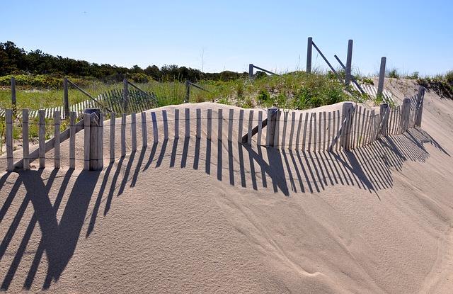 cape cod, provincetown, duna hierba